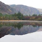 Glendalough lower lake by Desaster