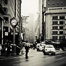Rain on 5th Avenue - New York City by Vivienne Gucwa