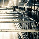 Brooklyn Bridge_ipad by Mike Reilly