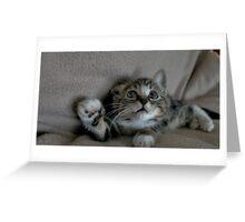 Grab My Paw, Grab My Paw Greeting Card