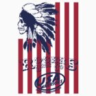 usa warriors indian by rogers bros by usa50states