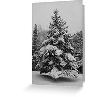Christmas Card Collection #4 Greeting Card