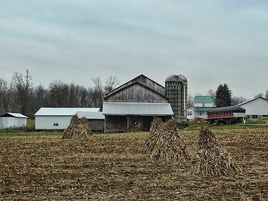 An Amish Farm by vigor