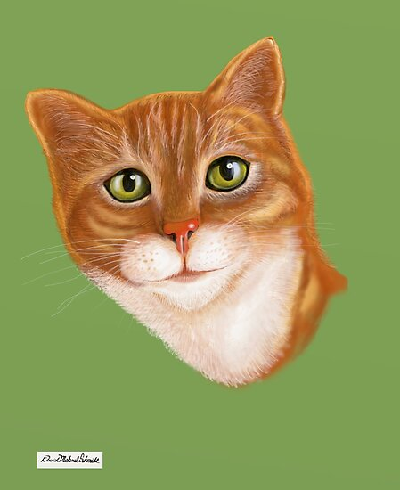 Tabby Cat  by David Michael  Schmidt
