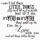 Little Things - One Direction by echosingerxx
