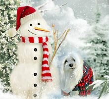 Snowdrop & The Jolly Snowman by Morag Bates