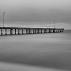 Black and white Jetty by James  Harvie