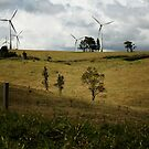 Windy Hill Windmills by Vanessa Barklay