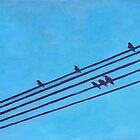 Birds Wires 3 by eolai