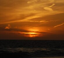 Floridian Sunset by Kevin Shannon
