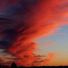 sun set or worse by bundug