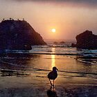 Cannon Beach, Oregon, USA  1989 by lynn carter