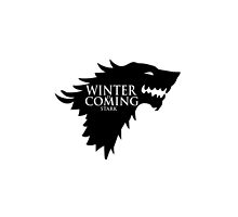Game of Thrones - Stark house by blackstarshop