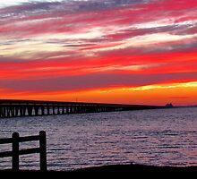 Carolina Sunset by Alberto  DeJesus