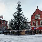 Macclesfield Christmas Tree by David W Bailey