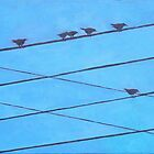 Birds Wires 4 by eolai