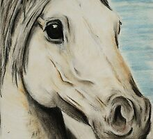 Tinted charcoal horse by gogston