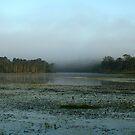 Leslie Harris Dam  by Rhapsody