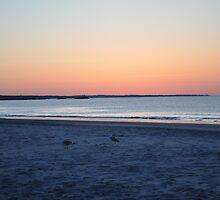 Beach Sunrise- RI by MikeCwynar