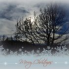 Merry Christmas (2) by Nicole  Markmann Nelson