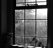 Looking through the kitchen window by Simon Brown