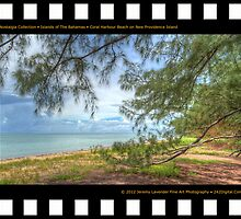 Nostalgia Collection • Islands of The Bahamas • Coral Harbour Beach on New Providence Island by 242Digital