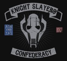 Knight Slayers Confederacy by apalooza