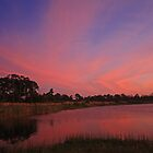 orange clouds at sunset by cliffordc1