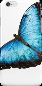 Blue Butterfly by pjwuebker