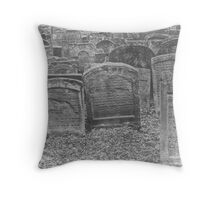 While soft winds shook the barley.... Throw Pillow
