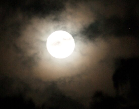 Last Night (11-28-12) FULL MOON by BCallahan