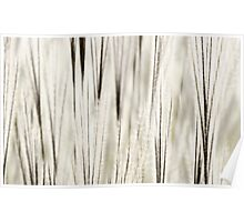 Abstract from Nature Poster