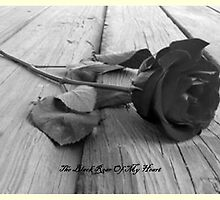 ROSE OF MY Heart by Norma-jean Morrison