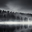 Untitled by Mikko Lagerstedt