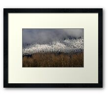 Frosted in the Valley Framed Print