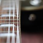 Guitar Close up by Karol Livote