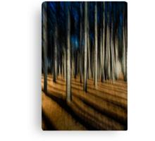 Following a path Canvas Print