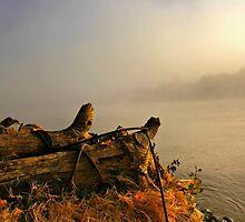 Breaking Through the Fog by Barbara  Brown