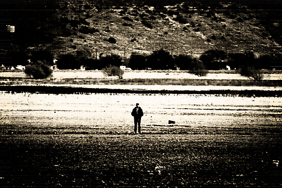 Out Standing in His Field by Corri Gryting Gutzman