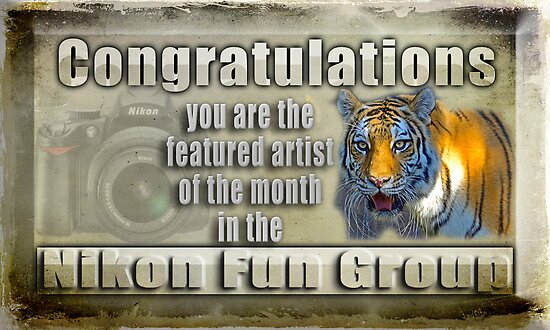 Featured Artist Banner Nikon Fun Group by imagetj