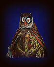 Owl in Fancy Dress - ipad cover by naturelover