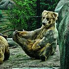A Big Grizzly Stretch & Scratch  by Culrick99