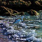 Gone Fishing by Culrick99