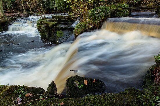 Rivelin Valley Falls by John Dunbar