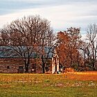 Barn on 875 Road by Sharlotte Hughes
