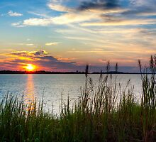 Savannah River Sunrise by Mark Tisdale