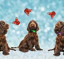 3 Puppies & The Butterflies by audah