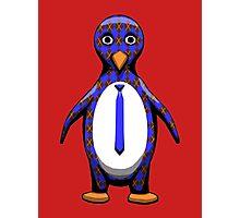 Argyle Penguin Photographic Print