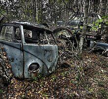 VW Graveyard 11 by rustyphoto