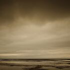 South Iceland, Volcanic Sand Flats by Dean Bailey